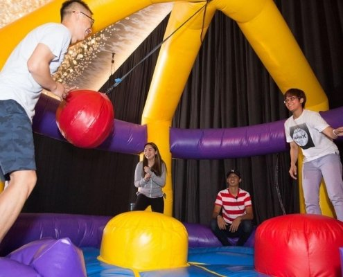 carnival adult bouncy castle