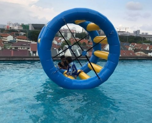 hamster wheel for kids singapore