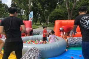hippo chow down rental singapore