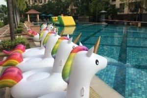 kids floater rental singapore