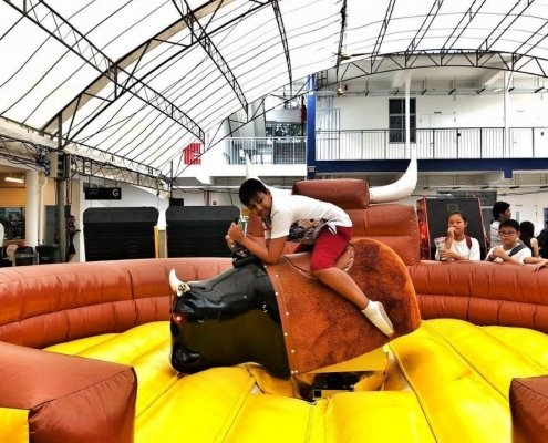 spinning bull inflatable singapore