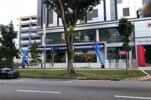 welcome air dancer for opening business singapore